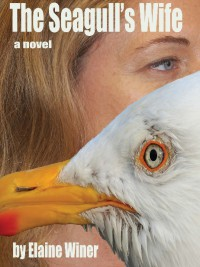 The Seagull's Wife